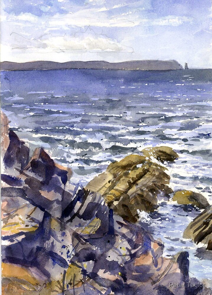 Stoer point  by Peter Lusby Taylor