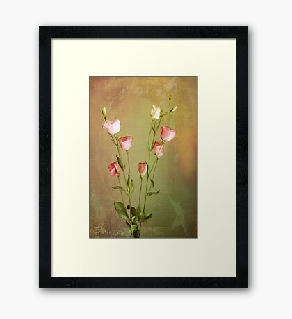 For Sandra  Framed Print