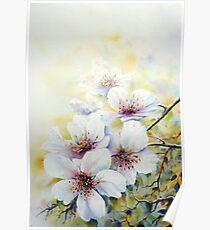 A spring bloom Ballet ! Poster