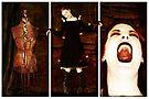 Hear My Scream by Sybille Sterk