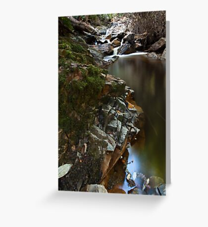 Holwell Gorge  Greeting Card