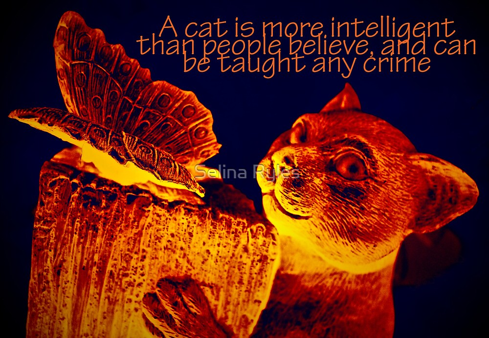 Cat Burglar  by Selina Ryles