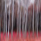 Red Forest In Motion by Bo Insogna