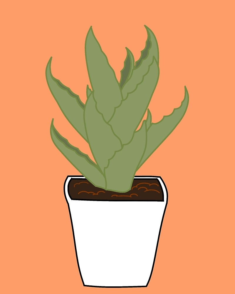 Succulent by JessicaPippi