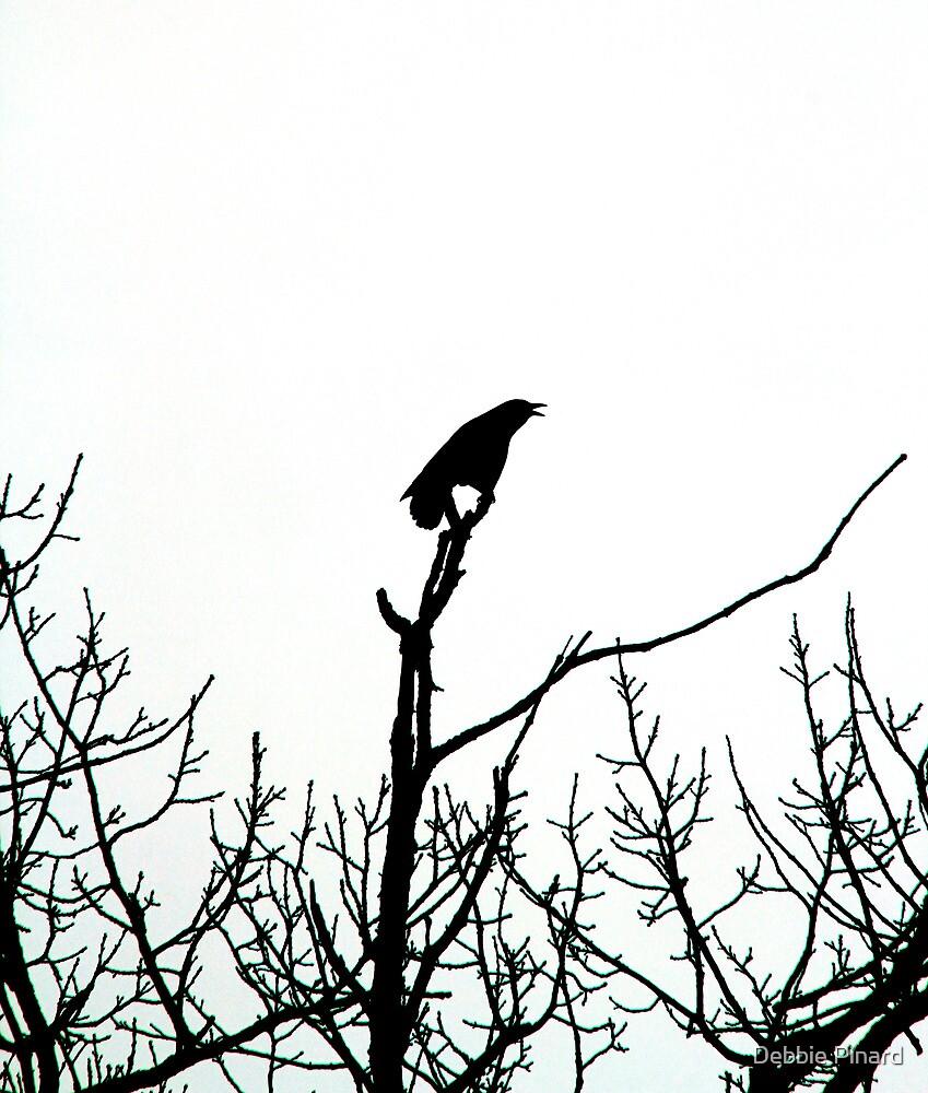 Blackbird Singing - Ottawa Ontario by Debbie Pinard