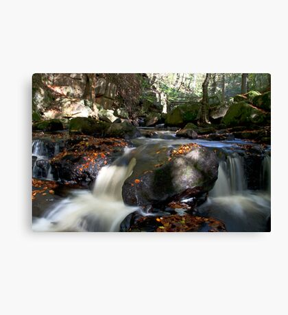 Padley Gorge  Canvas Print