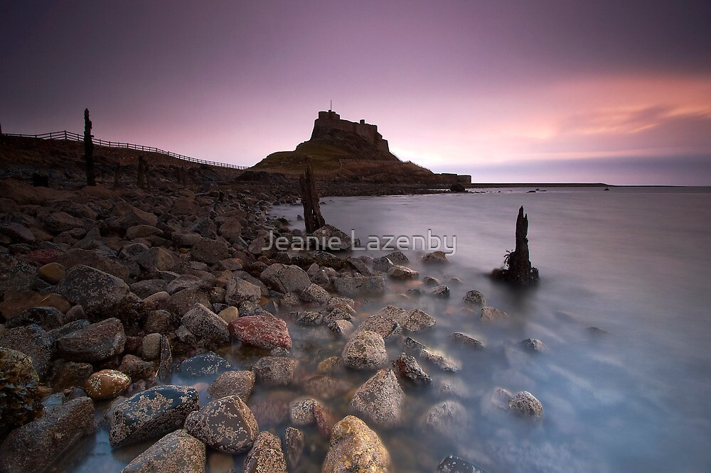 First Light by Jeanie