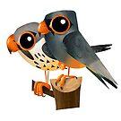 Amur Falcon by rohanchak