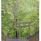 Ginko tree Yanesen by David  Kennett
