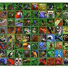 Rainforest Creatures by David  Kennett