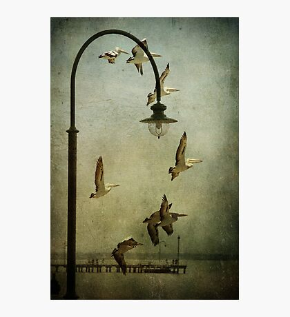 ~ We have Lift Off ~ Photographic Print