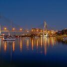 ANZAC Bridge, Sydney, Australia by Erik Schlogl