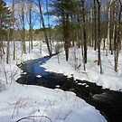 Winter Stream in Falmouth, ME - USA by quiltmaker
