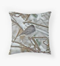 The Dark-eyed Junco (Junco hyemalis) Snowbird Throw Pillow