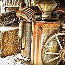 Rusty Relics by Jeanne Sheridan
