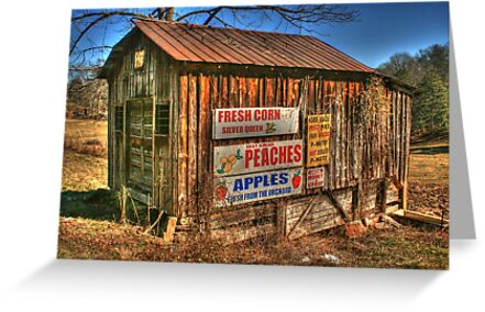 Old Store going into Dahlonega, Georgia by Chelei