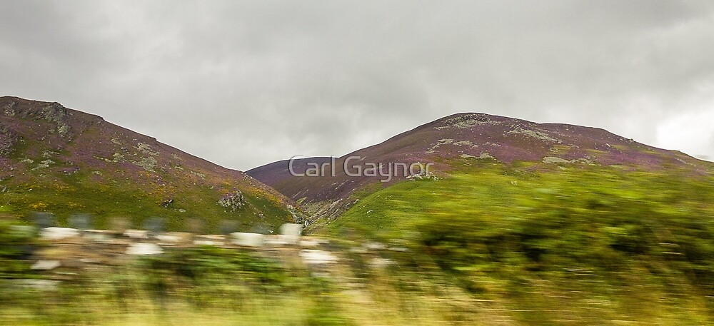 Land - A View by Carl Gaynor