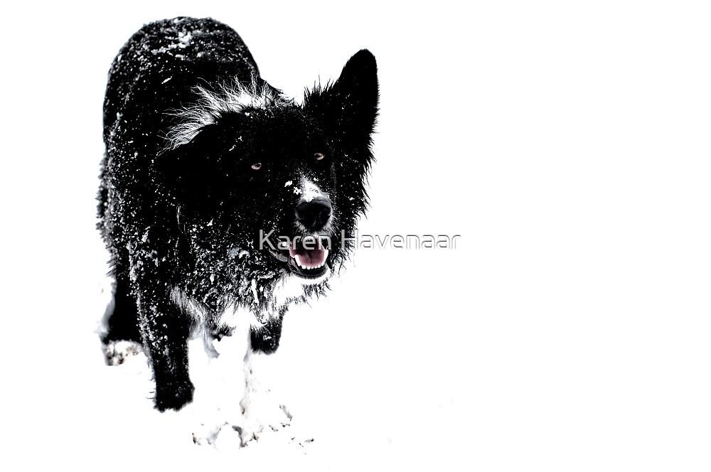 Black on White by Karen Havenaar