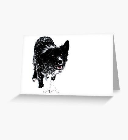 Black on White Greeting Card