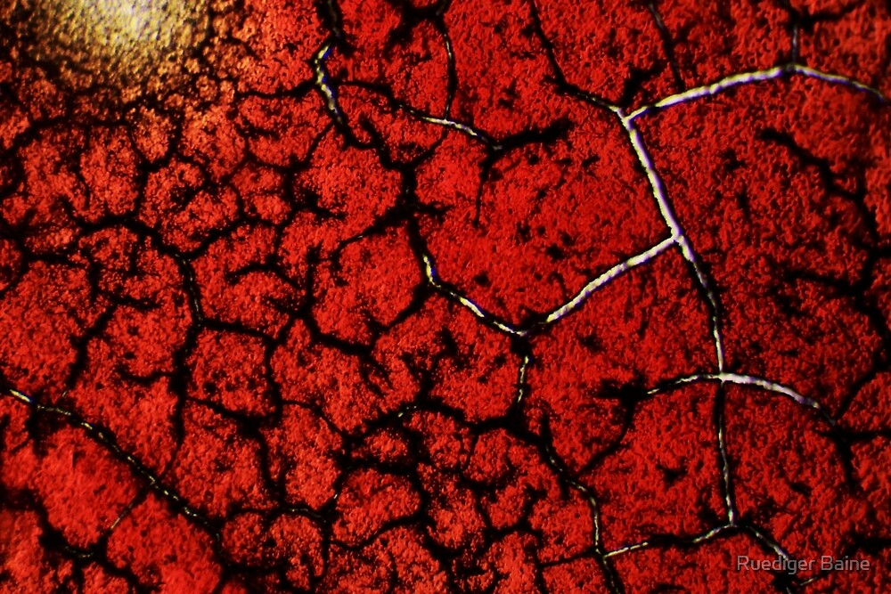 Crimson fractal 02 by Ruediger Baine