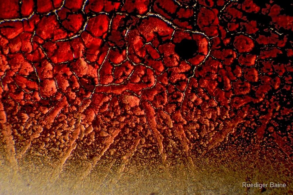Crimson fractal 03 by Ruediger Baine