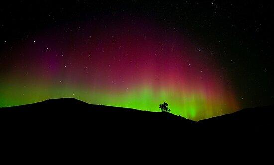 Northern lights by Veronica Ek