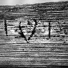 F Hearts T by mojo1160