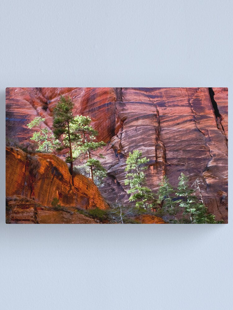 Alternate view of Test of Time Canvas Print