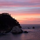 Point Lobos Sunset by Will Hore-Lacy