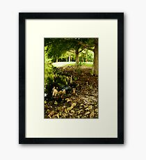 Sandalwood Neighborhood. Framed Print