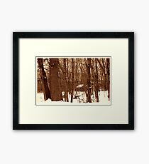 020711-44  ONCE UPON A TIME WE ALL LIVED DEEP IN THE FOREST... Framed Print