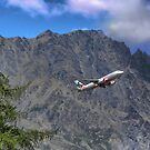 Flying Beside the Remarkables by Larry Lingard-Davis
