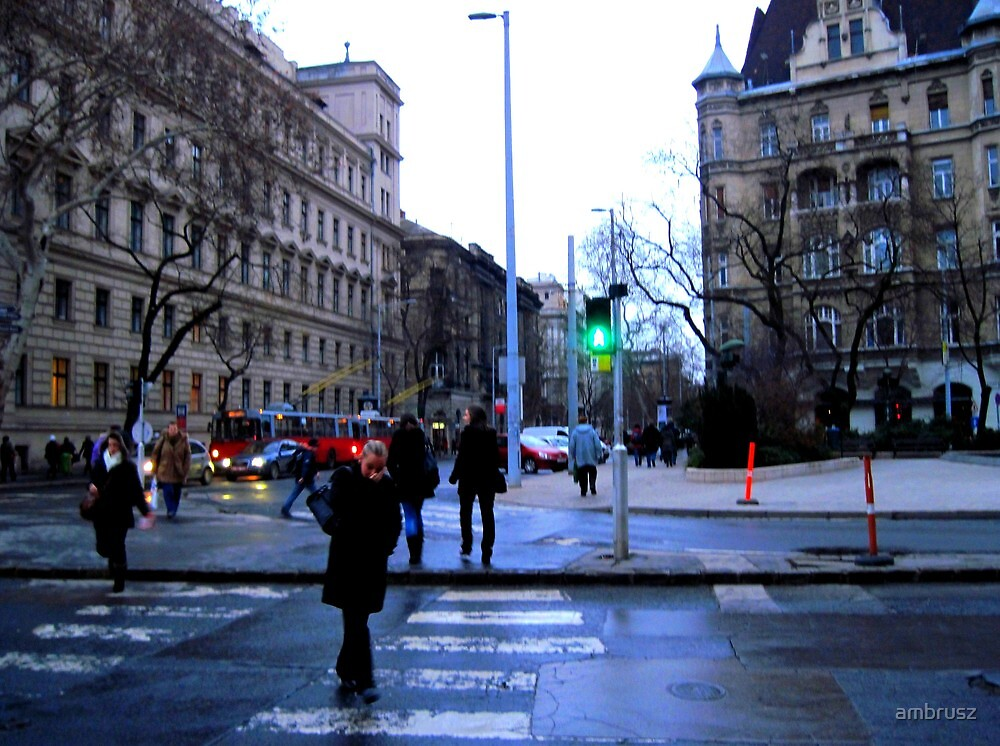 Street scape at dawn_Budapest.Hungary2011JAN by ambrusz