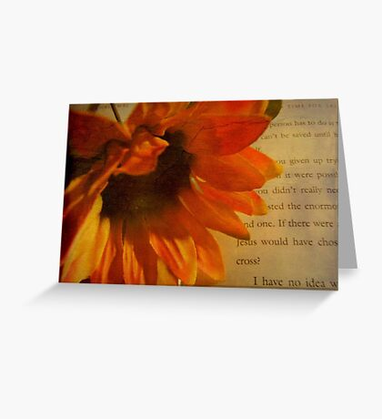 A Peaceful Moment  © Greeting Card