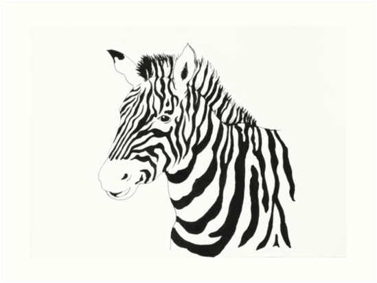zebra by xichen