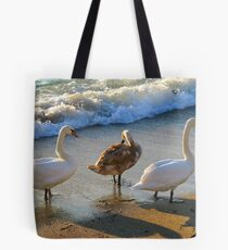 Family rest at coast Tote Bag