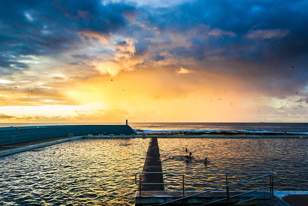 Morning Swimmers by lachlan1988
