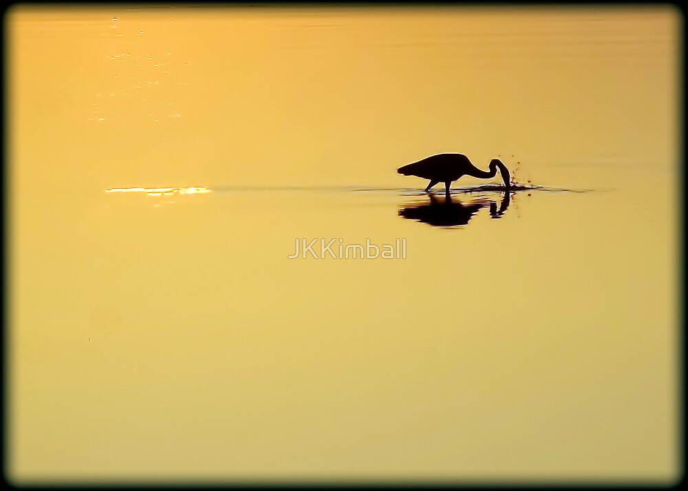 Early Morning Dreams by JKKimball