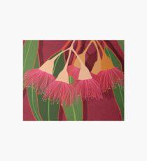 Pink Flowering Gum Art Board Print