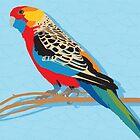 Rosella Bird by blueidesign