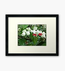Beautiful Delicate Bouquet of Chinese Flowers Framed Print