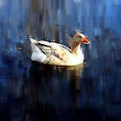 Day At The Lake by Dawn di Donato