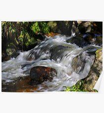 West Dart River  Dartmoor Poster