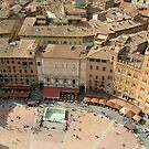 Piazza del Campo, Siena by adelaideT