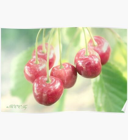 Cherries for you Poster