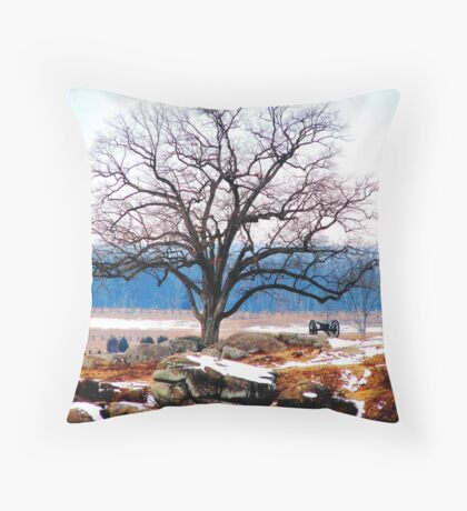 A Tree Stands at Devil's Den Throw Pillow