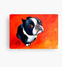 Boston Terrier dog #1 painting Svetlana Novikova Metal Print