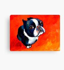 Boston Terrier dog #1 painting Svetlana Novikova Canvas Print