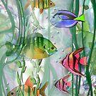 Plenty of Fish in the Sea by Robin Pushe'e
