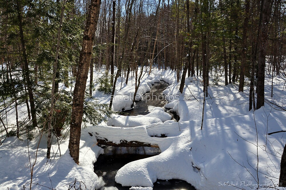 Snow Capped Brook in the Woods by smalletphotos